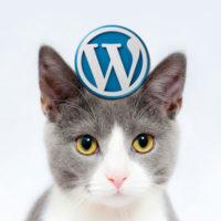 워드프레스 잘하는 고양이, 프레스캣